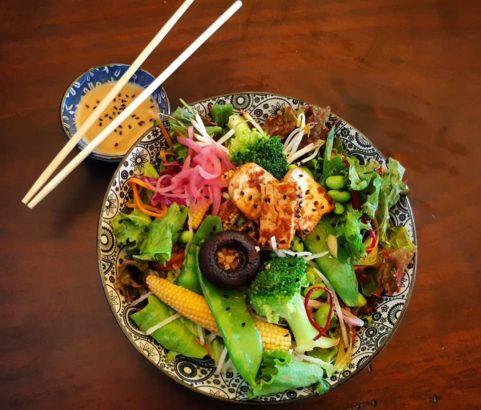 vegetarian, organic, santa teresa, costa rica, vegetarian restaurant